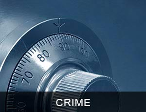 crime insurance